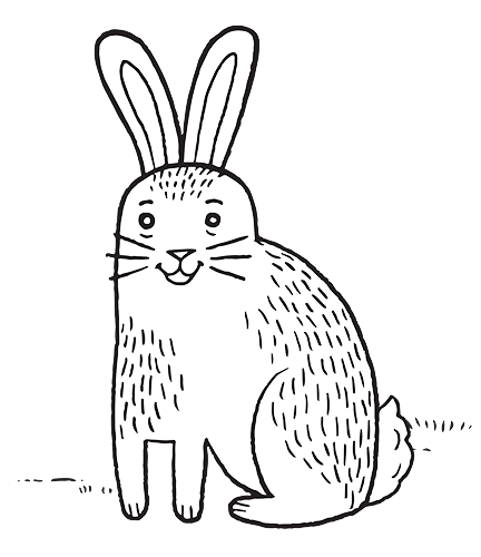Download Rabbit Drawing