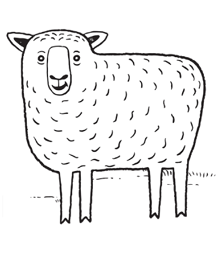 Download Sheep Drawing